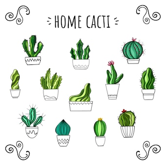 Vector set of home cacti. hand-drawn style. cute stickers