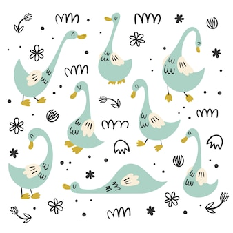 Vector set of isolates with geese, ducks. flat, cartoon, doodle styles. bird character