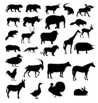 Векторный набор силуэтов животных