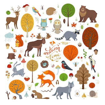 Векторный набор осенних лесных деревьев очаровательная коллекция детских книг, приглашений и плакатов