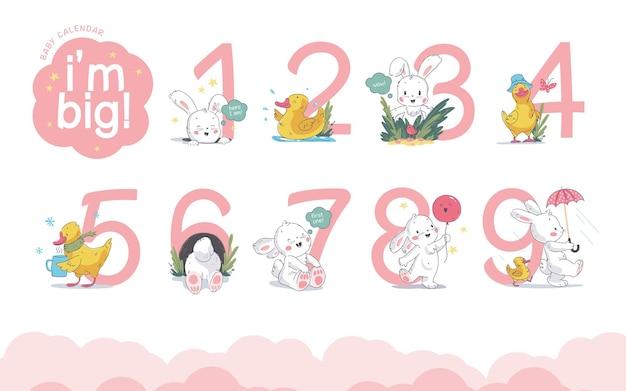 귀여운 작은 토끼와 작은 노란색 오리가 있는 아기 달력 숫자 또는 숫자의 벡터 세트