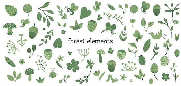 Векторный набор милых плоских лесных насекомых и растений. коллекция лесных элементов.