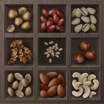 Векторный набор различных орехов, фундуков, фисташек, арахиса, кешью, кедра и грецких орехов, вид сверху в деревянной коробке
