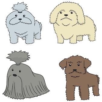 犬のベクトルセット、shih tzu