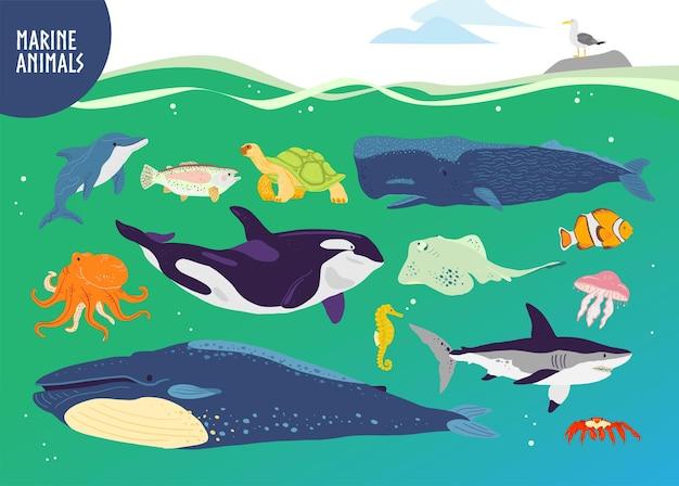 평평한 손으로 그린 귀여운 해양 동물의 벡터 세트:고래, 돌고래, 물고기, 상어, 해파리. 수중 야생 동물. 어린이 알파벳, 책 일러스트레이션, 인포그래픽, 배너, 엠블럼, 라벨 등을 위한 구피