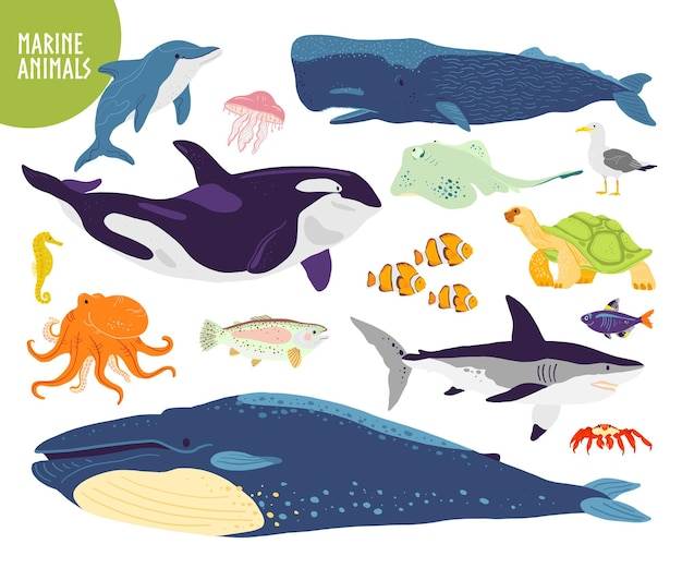 평평한 손으로 그린 귀여운 해양 동물 고래 돌고래 물고기 상어 해파리의 벡터 세트
