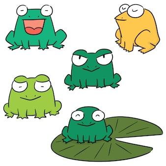 Векторный набор лягушки