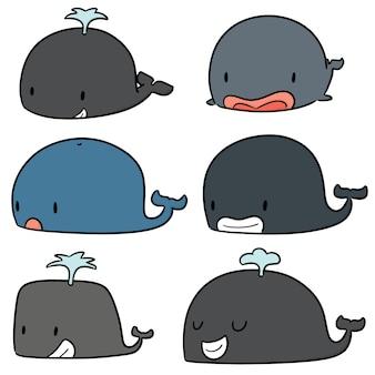 Векторный набор китов