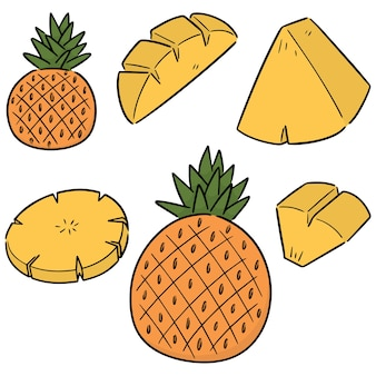 Vector set of pineapple