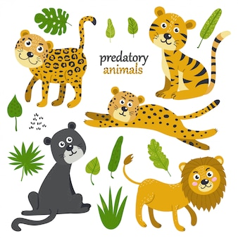 Vector set of predatory animals