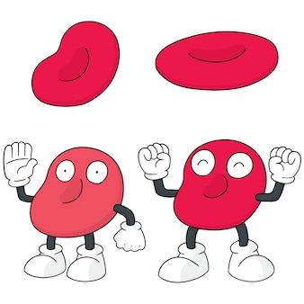 Vector set of red blood cell