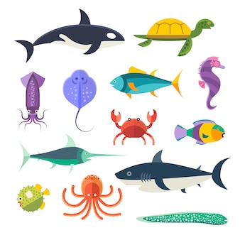 Vector set of sea marine fish and animals