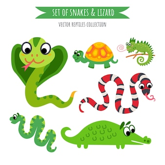 Vector set of snake and lizard isolated on white