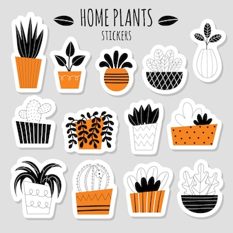Vector set of thirteen stickers with stylized indoor plants. potted flowers. house gardening. catus, succulent, sanseviera, dracaena. flat vector illustration on a light background.