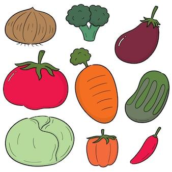 Vector set of vegetable