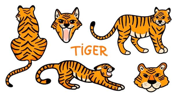 Векторный набор с милыми дикими тиграми в мультяшном стиле на белом фоне