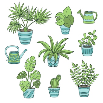 Vector set with potted houseplants and watering cans, on a white background