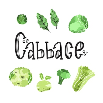 Vector set with vegetables of the cabbage family.