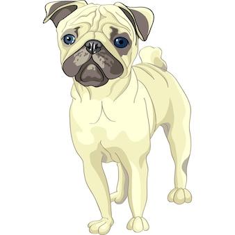 Векторный рисунок собака породы мопс палевый