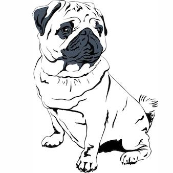 Векторный рисунок собака породы мопс рука рисунок вектор