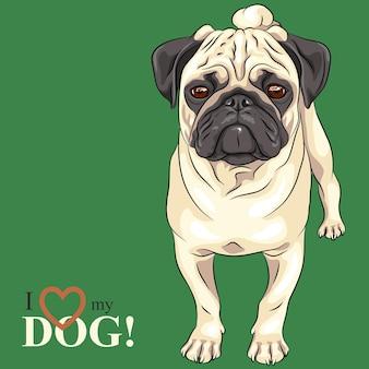 Векторный рисунок серьезная собака породы мопс палевый