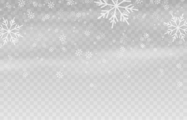 Vector snow snow on an isolated transparent background snowfall blizzard winter snowflakes
