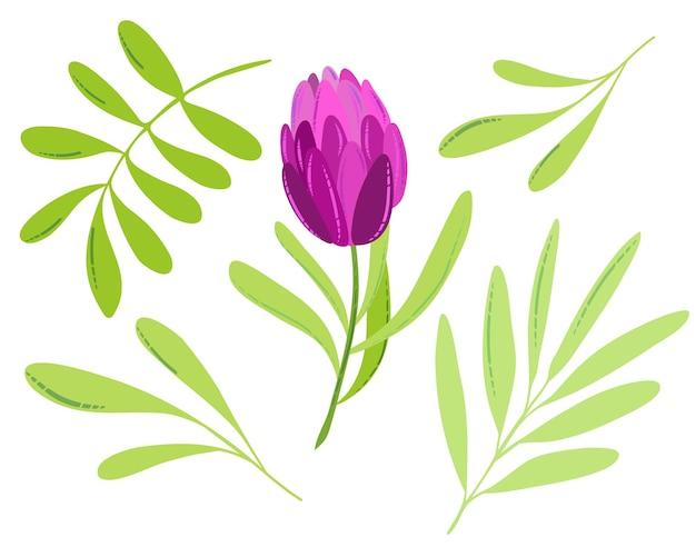 Вектор весна или лето цветок розовый плоский тюльпан