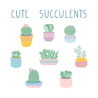 Vector succulents and cacti illustration set.