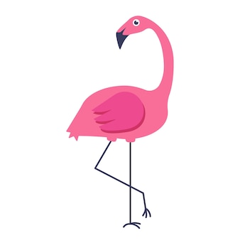 Vector summer card with pink flamingo isolated on white background