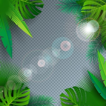 Vector summer illustration with tropical palm leaves on transparent background