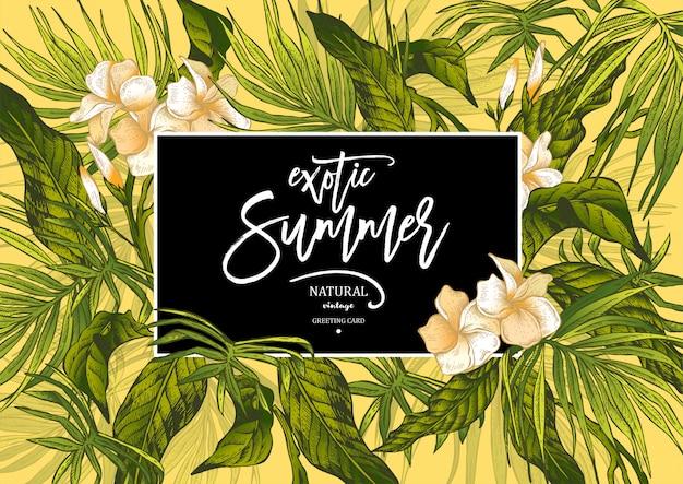 Vector summer leaves vintage exotic greeting card