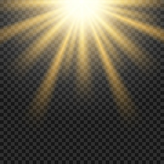 Vector sun light lens flare on transparent grid