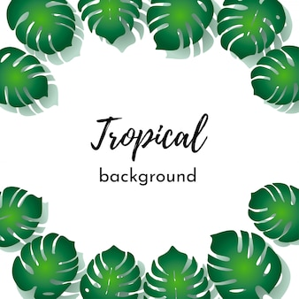 Vector template for card, poster. green exotic tropical palm leaves with place for text