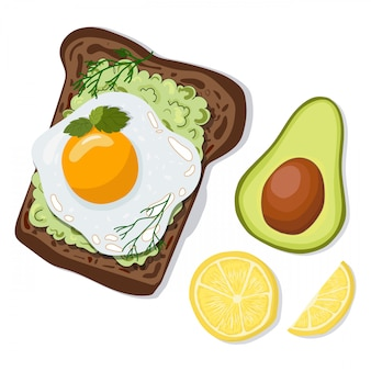 Vector toast with avocado and egg