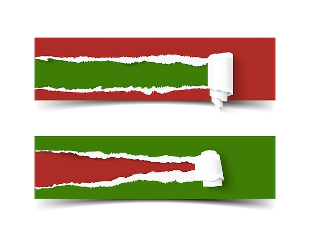 Vector torn paper banner with paper roll
