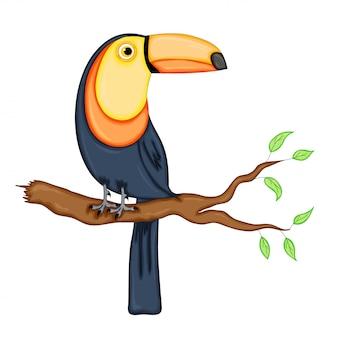 Vector toucan.