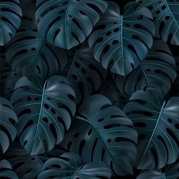Vector tropical illustration with green leaves monstera on dark background