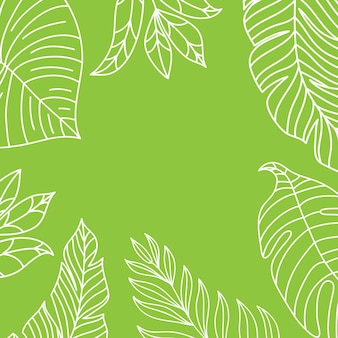 Vector tropical jungle frame with palm trees and leaves on white background for wedding,quotes, birthday.