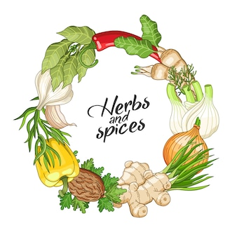 Vector vegetable circle template with spices