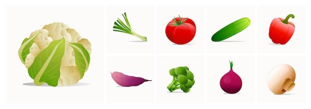 モダンなスタイルで設定されたベクトル野菜アイコン