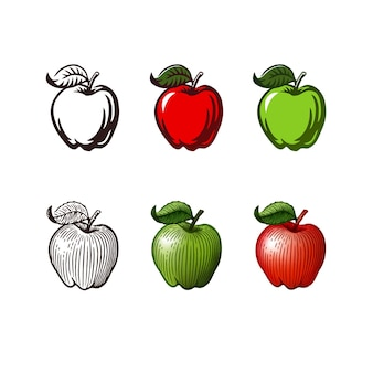 Vector vintage engraved illustration of an apple isolated on white