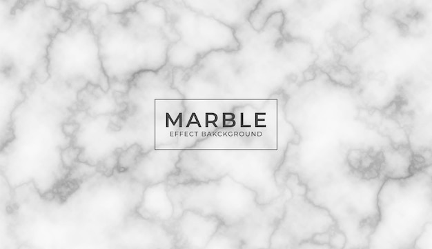 Vector white marble stone