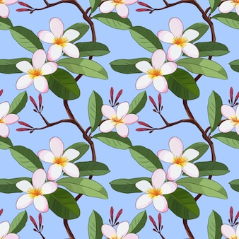 Vector with plumeria flowers on blue seamless pattern.
