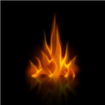 Vector yellow orange fire flame bonfire