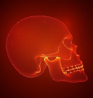 正方形と三角形のポリゴンを持つ人間の頭蓋骨のベクトルセット。