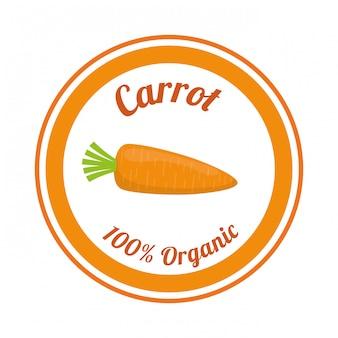 Vegan food design.