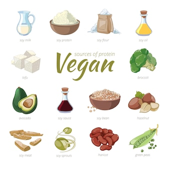 ビーガンのタンパク質源。漫画スタイルの植物ベースのタンパク質クリップアート。エンドウ豆とインゲンマメ、ヘーゼルナッツとアボカド、ブロッコリーと大豆