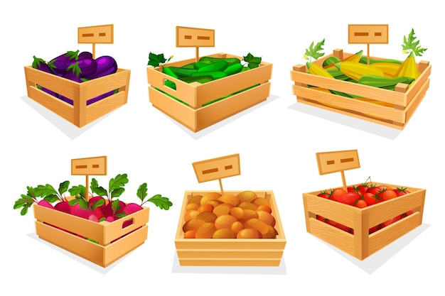 Vegetable assortment at market place or store set
