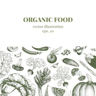 Овощной рисованной фон векторные иллюстрации