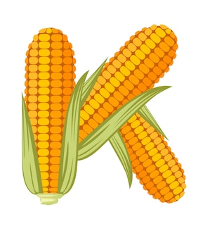 Vegetable letter k corn style cartoon vegetable design flat vector illustration isolated